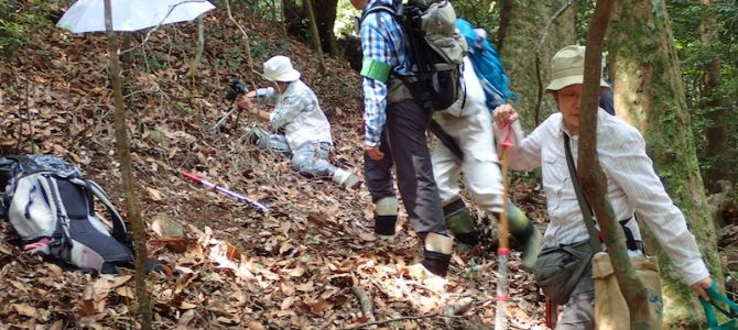 第2回 日本地下生菌研究会 観察会報告